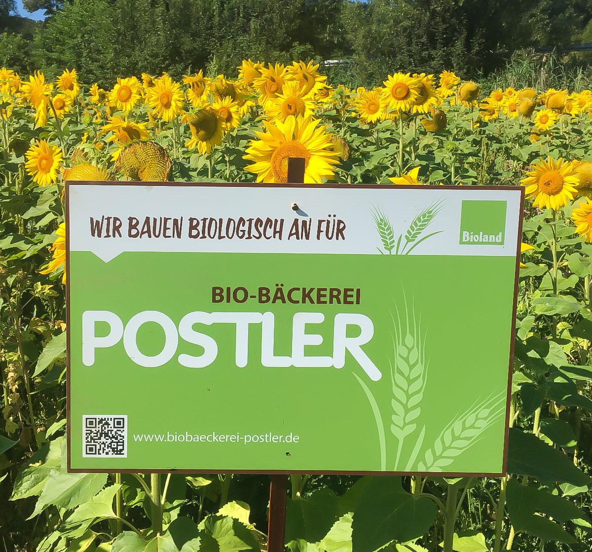 Biolandhof Nagengast in Trailsdorf
